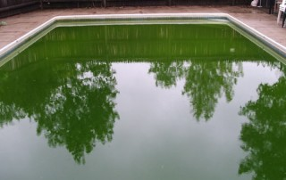 Algae Treatment Houston TX